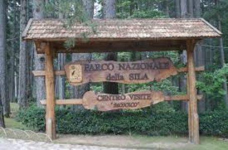 """Agosto nel Parco. Al via le attività della Legambiente """"Valle del Tacina""""."""